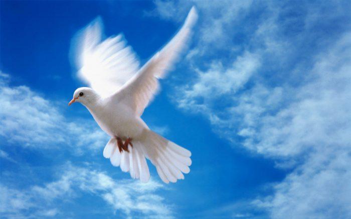 Дары Святого Духа